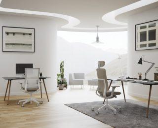 Fotele gabinetowe Violle